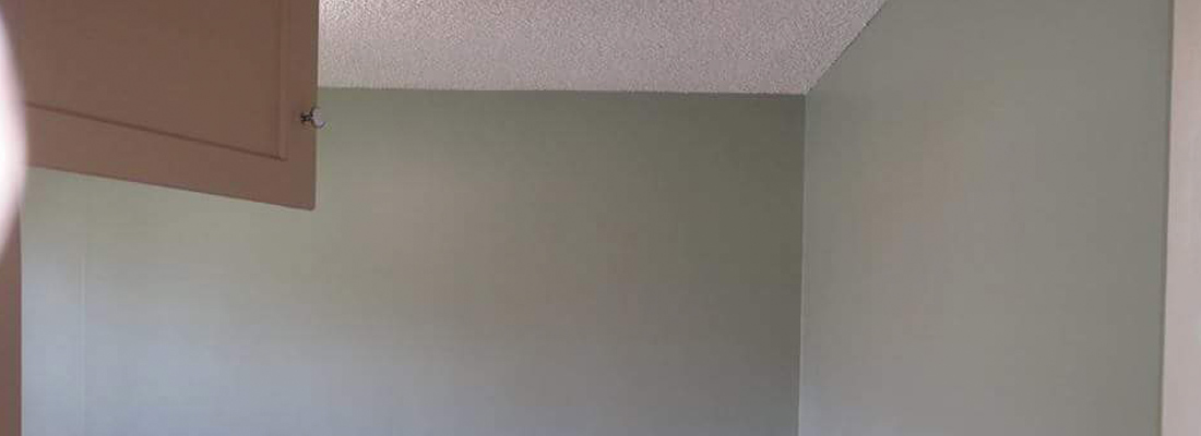 Painting Residential Commercial Professionals Seal CA